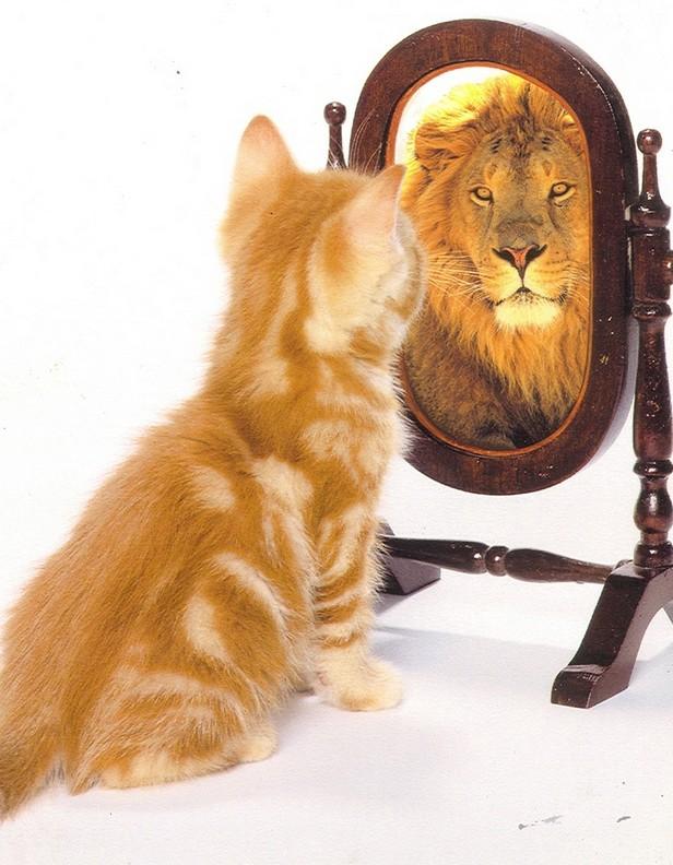 Результаты тренинга уверенности в себе